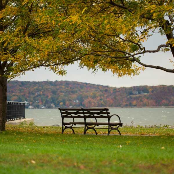 Irvington-coffee-park_LeslieHallman